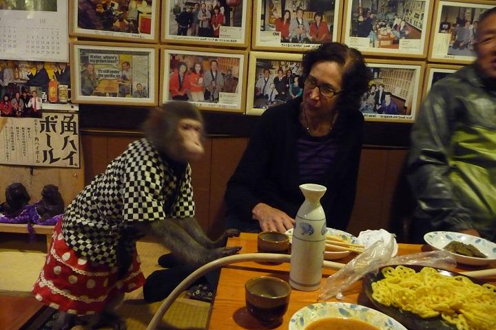 Kayabukiya Tavern, Japan,  a restaurant where the waitresses are replaced by monkeys