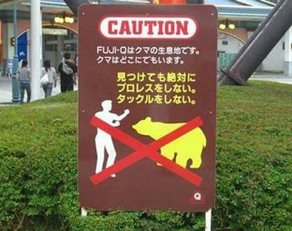 Avoid the bears