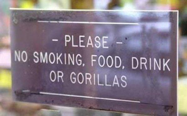 Forbidden to bring the Gorillas