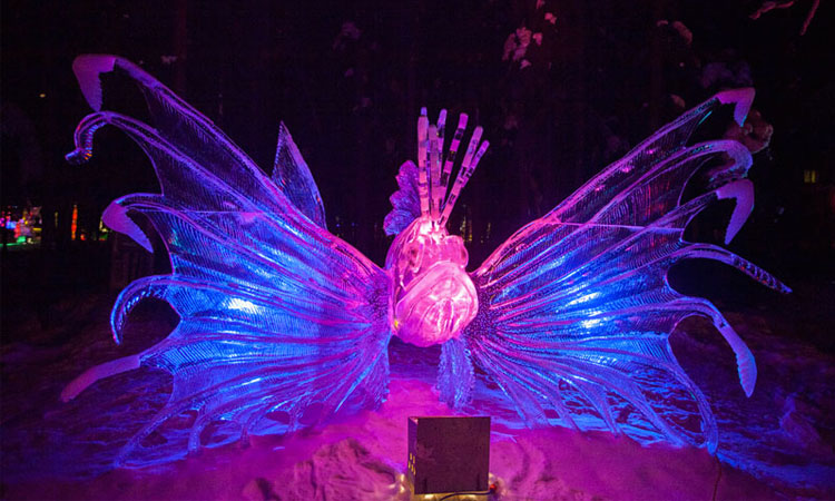 butterfly ice sculpture made from single ice block
