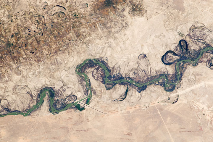 Floodplain of the Syr Darya River - Kazakhstan
