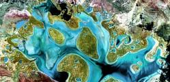 Amazing Earth Satellite Pictures 4