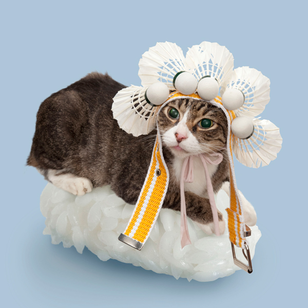 Sushi Cats New Japanese Eating Fashion 12