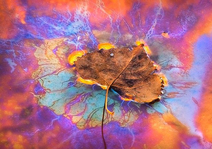 un-photographe-sublime-les-paysages-naturels-damerique-avec-des-jeux-de-lumiere-a-couper-le-souffle35