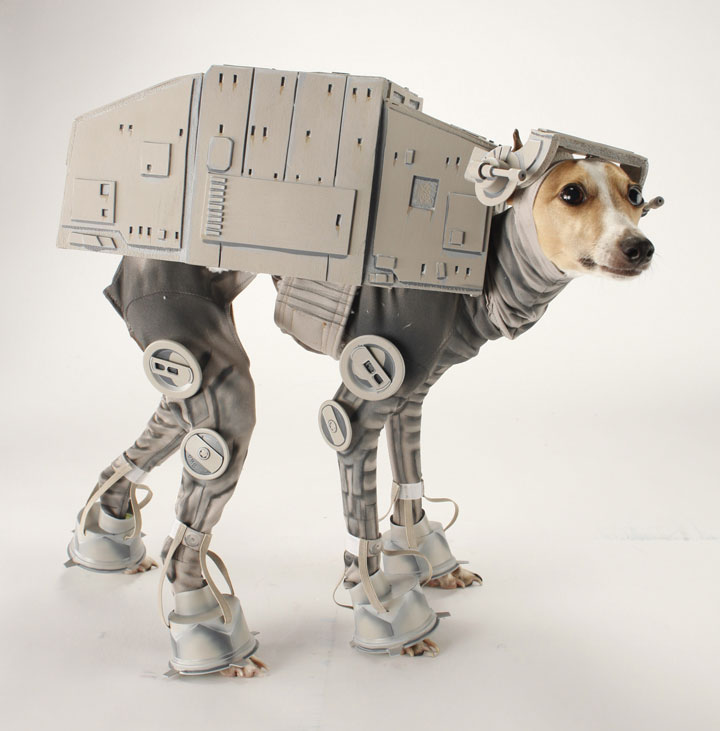 The AT-AT dog ready to conquer the planet-Amazing Animal Halloowen Disguises
