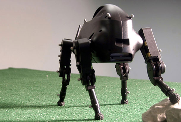 Robot LittleDog By Boston Dynamics 1