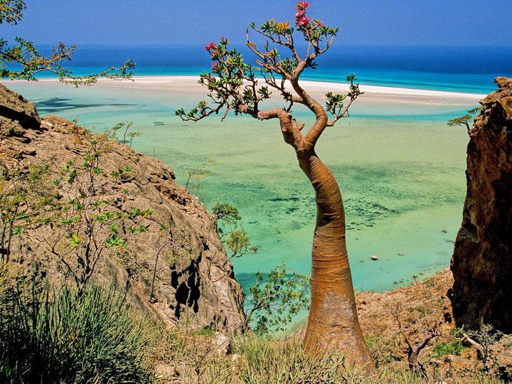 Socotra, Yemen