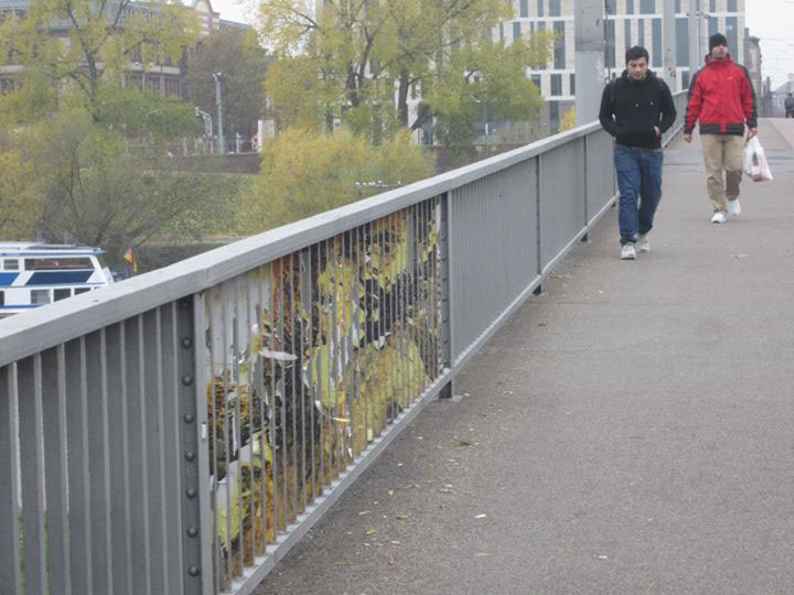 Zebrating- Original Hidden Railing Urban Street Art