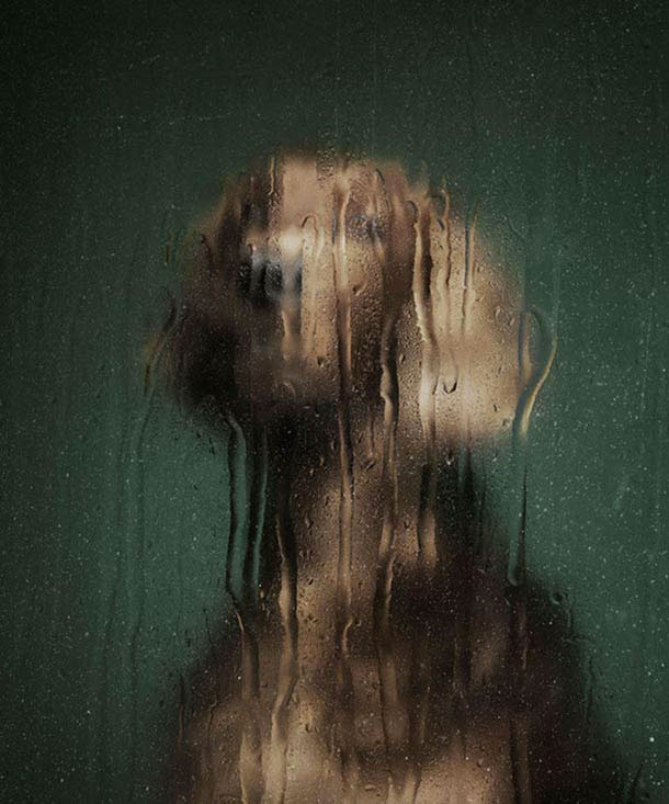 A London Artist Makes Striking Portraits Of Dogs Abandoned By Their Owners-Martin Usborne