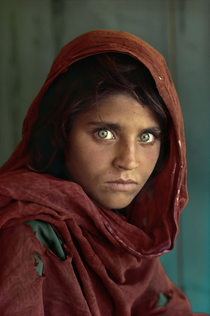 The green-eyed Afghan