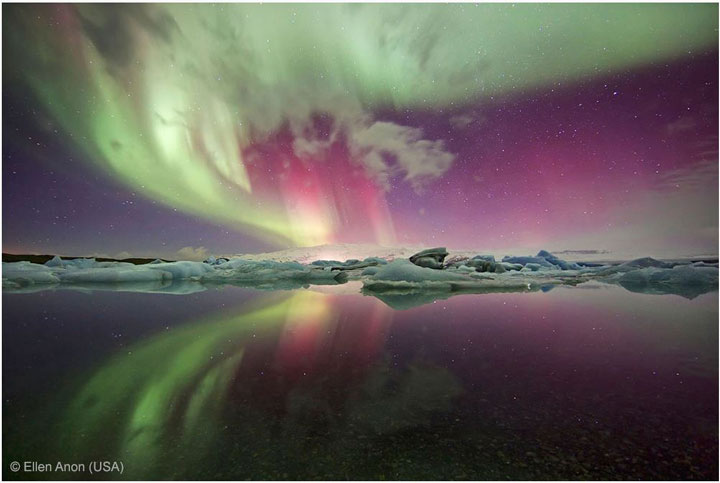 Aurora-Award Winning Wildlife Photographs From Wildlife Photographer Contest