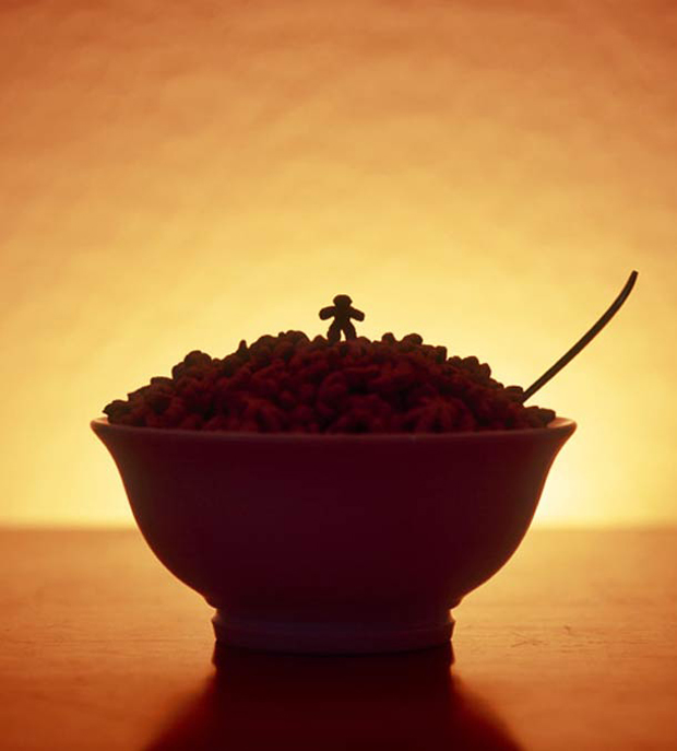 Cerealism-Amazing Artworks And landscapes Created Using Breakfast Cereals-13