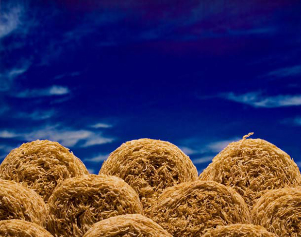 Cerealism-Amazing Artworks And landscapes Created Using Breakfast Cereals-15