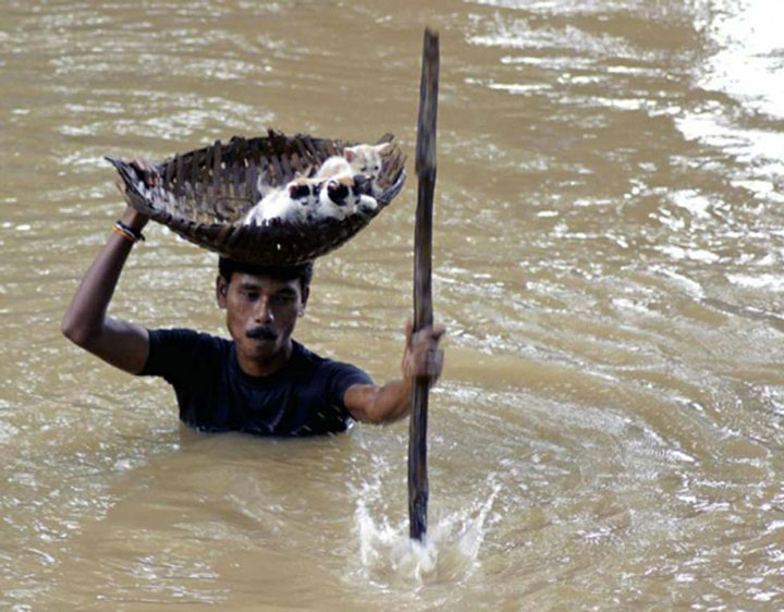 The man who saves kittens during a flood -Emotional Charged Photographs That Prove That Humanity Is Not Yet Lost-5