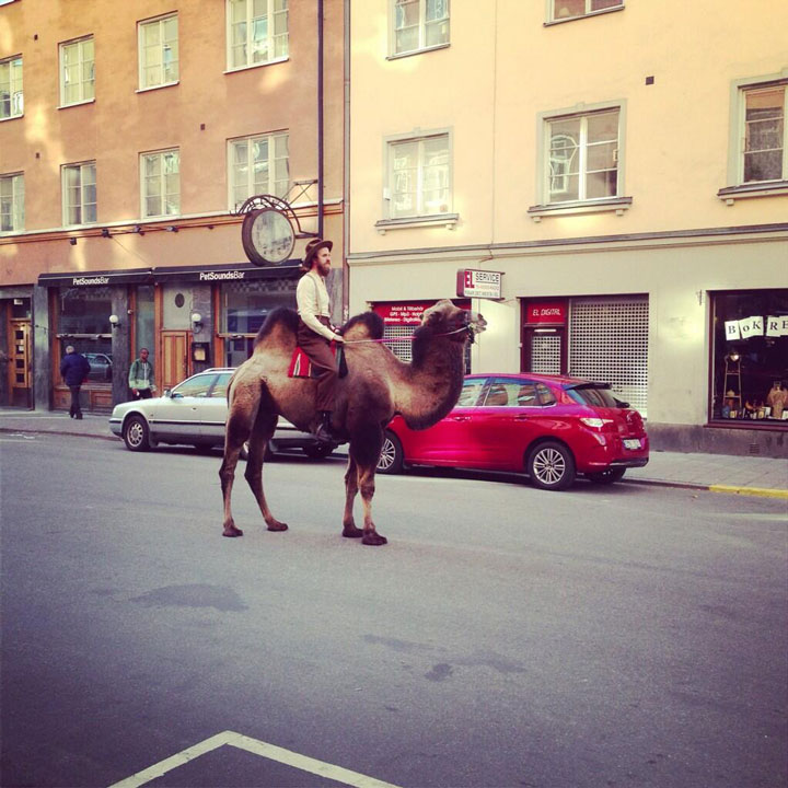 The man who rides his camel in the middle of the street-25 extreme Hipsters of modern times-