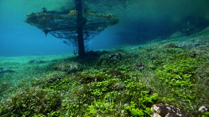 les-superbes-photographies-dun-parc-englouti-chaque-annee-sous-quatre-metres-deau-apres-la-fonte-dun-glacier20