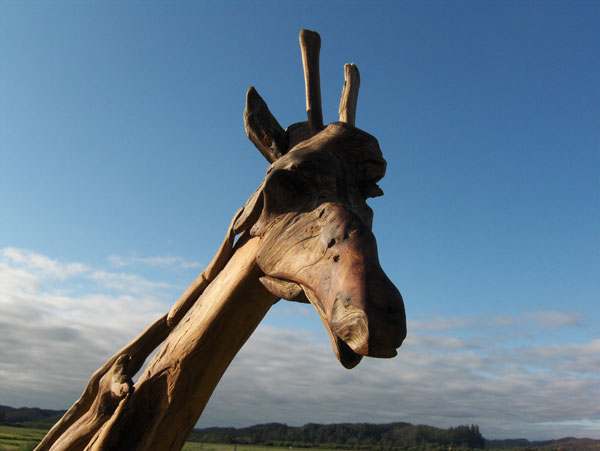A giraffe-Jeffro makes impressive sculptures made only with wood-7