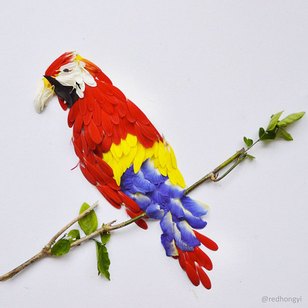 Beautiful Multicolored Birds Made From Hundreds Of Flower Petals-6