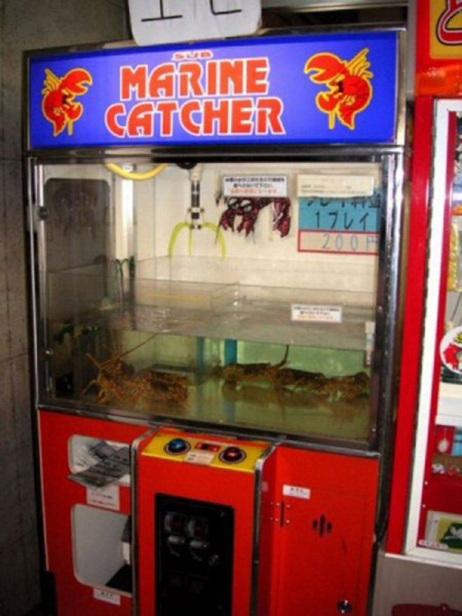 Strange Vending Machines -1-The lobster vending machine