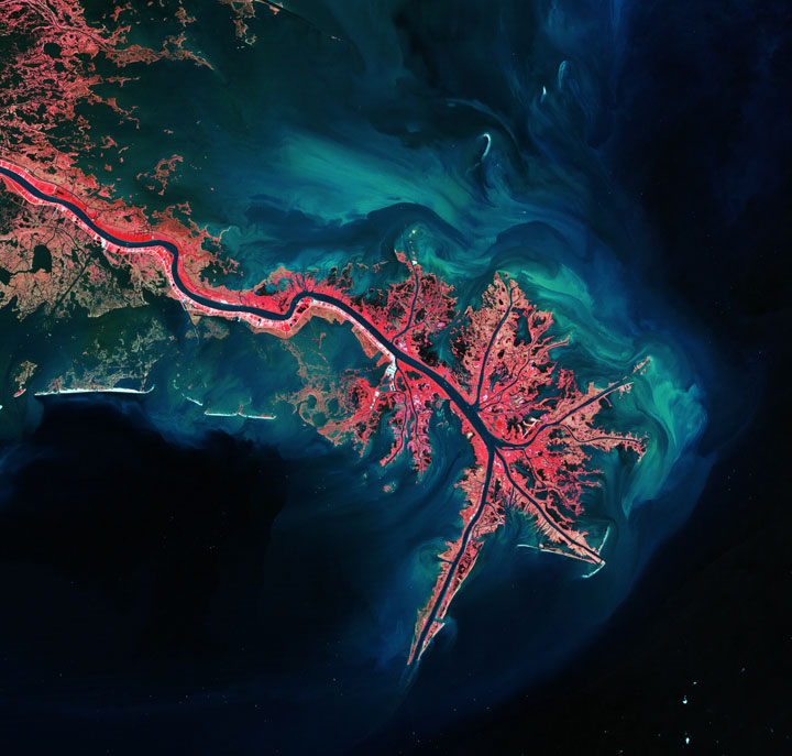 The Mississippi River Delta-Striking-Landscapes-of-Earth-from-space-as-artworks-117