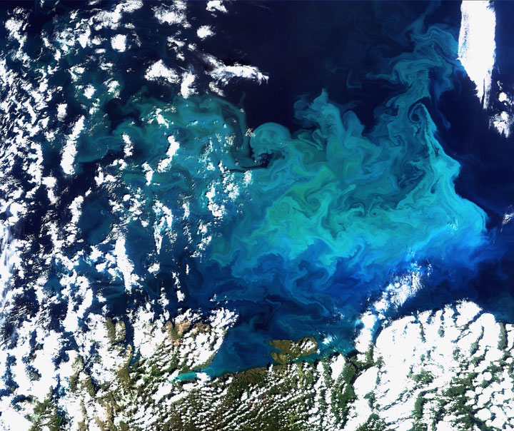 Plentiful plankton-Striking-Landscapes-of-Earth-from-space-as-artworks-15