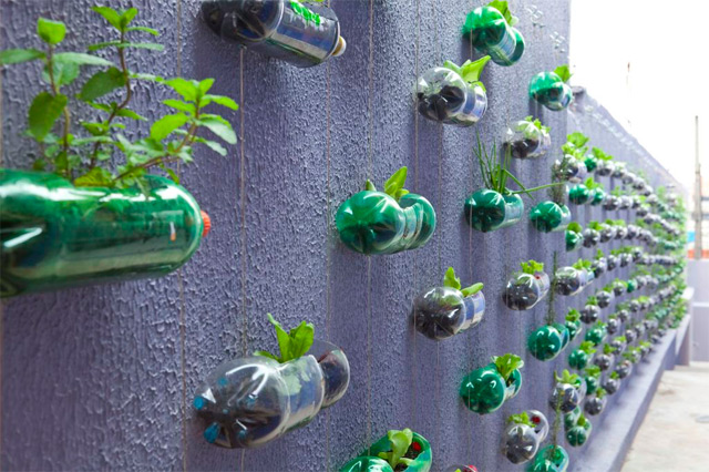 The vertical garden Lar Doce Rar