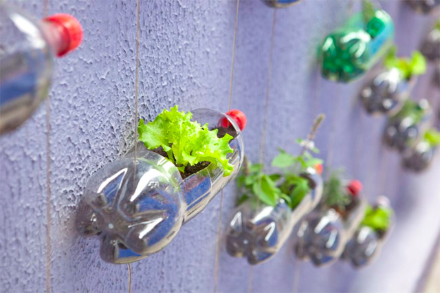 The vertical garden Lar Doce Rar