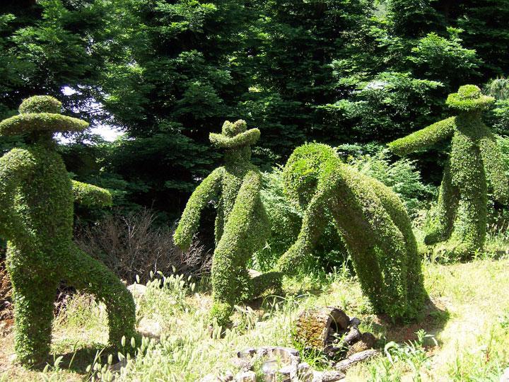 Stroll through the most weird gardens of the world photo for Gilroy garden trees