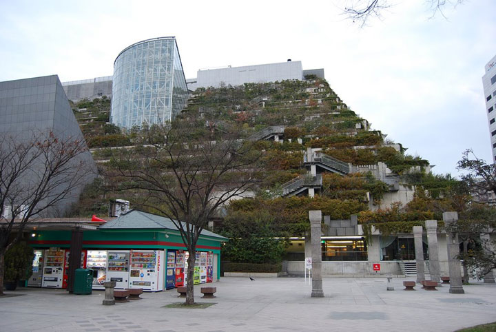 The Step Garden