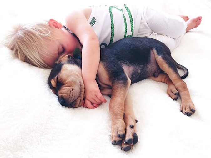 Jessica A stunning Series Of Photograph Immortalizes The Friendship Between A Baby And A Puppy-