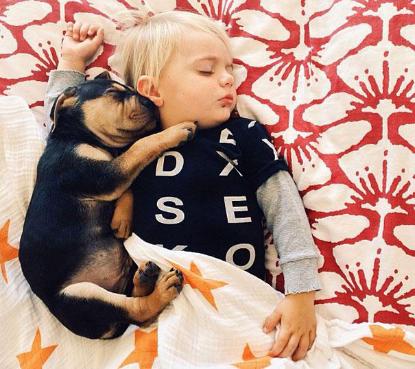 Jessica A stunning Series Of Photograph Immortalizes The Friendship Between A Baby And A Puppy-18
