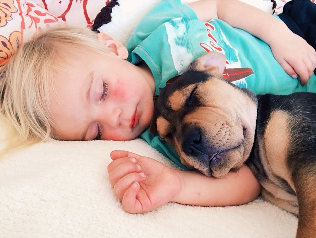 Jessica A stunning Series Of Photograph Immortalizes The Friendship Between A Baby And A Puppy-4
