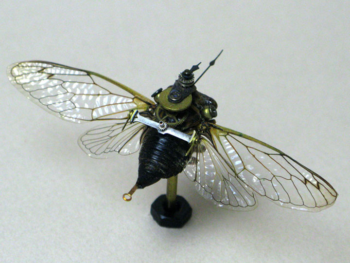 Bees and Wasps-Discover The Impressive Bionic Insects From Insect Labs-16