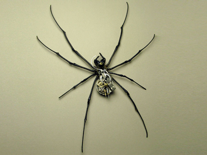 Arachnids-Discover The Impressive Bionic Insects From Insect Labs-17