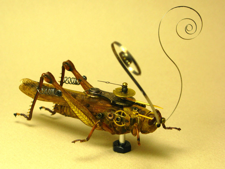 Locust-Discover The Impressive Bionic Insects From Insect Labs-20