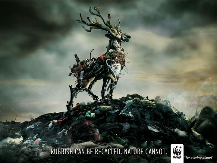 20 Most Striking WWF Posters That Will Motivate You To Fight For The Planet-7