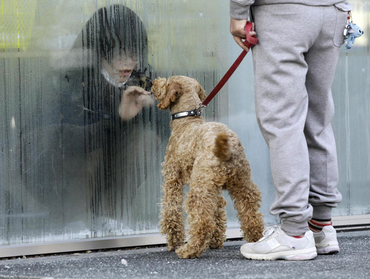 25. A woman being treated with radiations looks at her dog through a window in Nihonmatsu in Japan-Most Touching Photographs-24