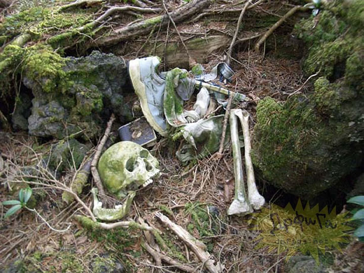 The suicide forest in Japan -The 10 Most Scary Places On The Earth-25