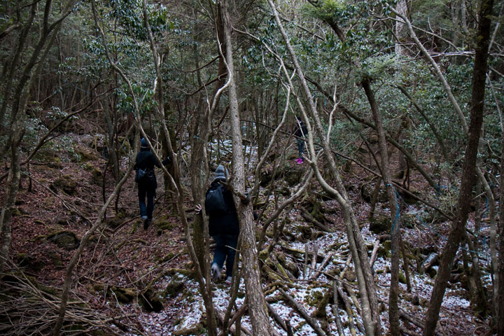 The suicide forest in Japan -The 10 Most Scary Places On The Earth-27