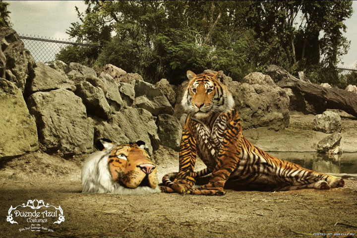 Duende Azul-Creative Advertisements That Will Make You Die Laughing-5