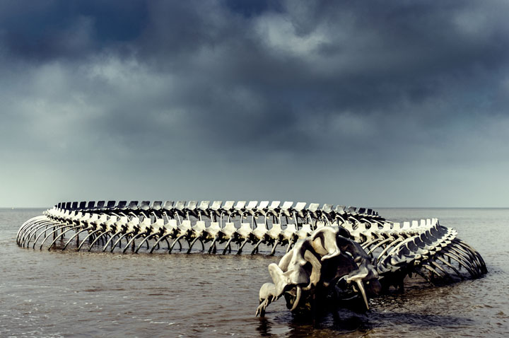 A Giant Aluminium Made Skeleton Of Serpent On the Beach of Loire, France-16