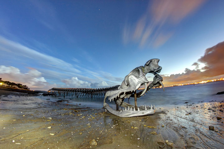 A Giant Aluminium Made Skeleton Of Serpent On the Beach of Loire, France-7