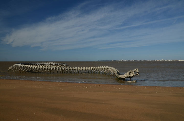 A Giant Aluminium Made Skeleton Of Serpent On the Beach of Loire, France-9