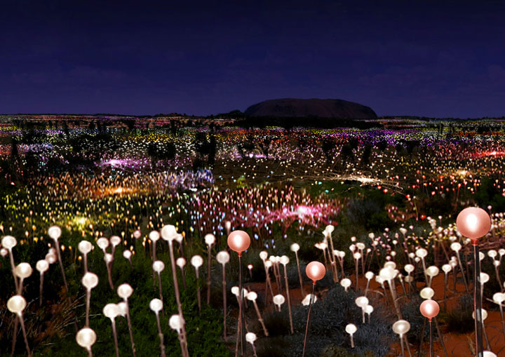 Enjoy A Walk Through The Lavish Garden Lights of Bruce-10