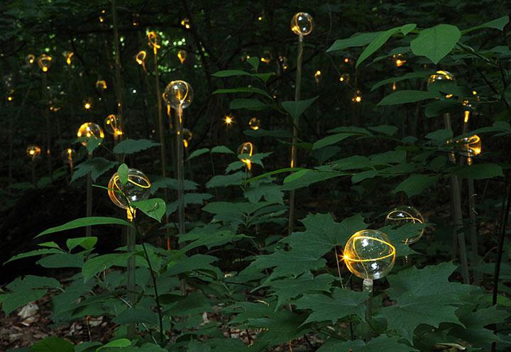 Enjoy A Walk Through The Lavish Garden Lights of Bruce-11