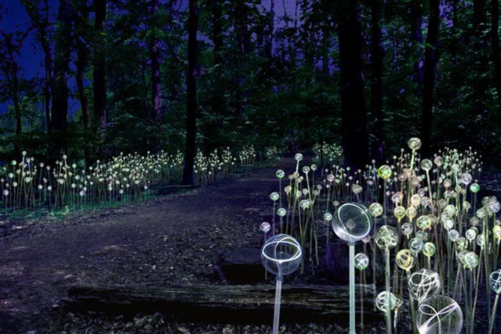 Enjoy A Walk Through The Lavish Garden Lights of Bruce-19