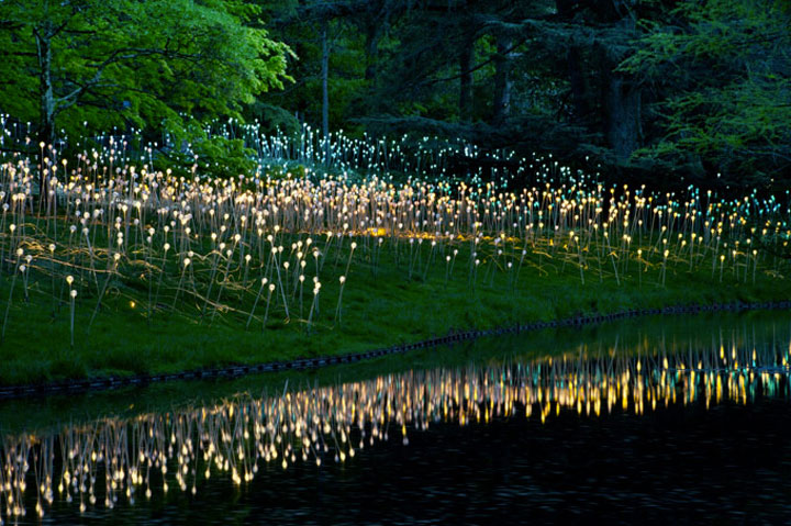 Enjoy A Walk Through The Lavish Garden Lights of Bruce-3