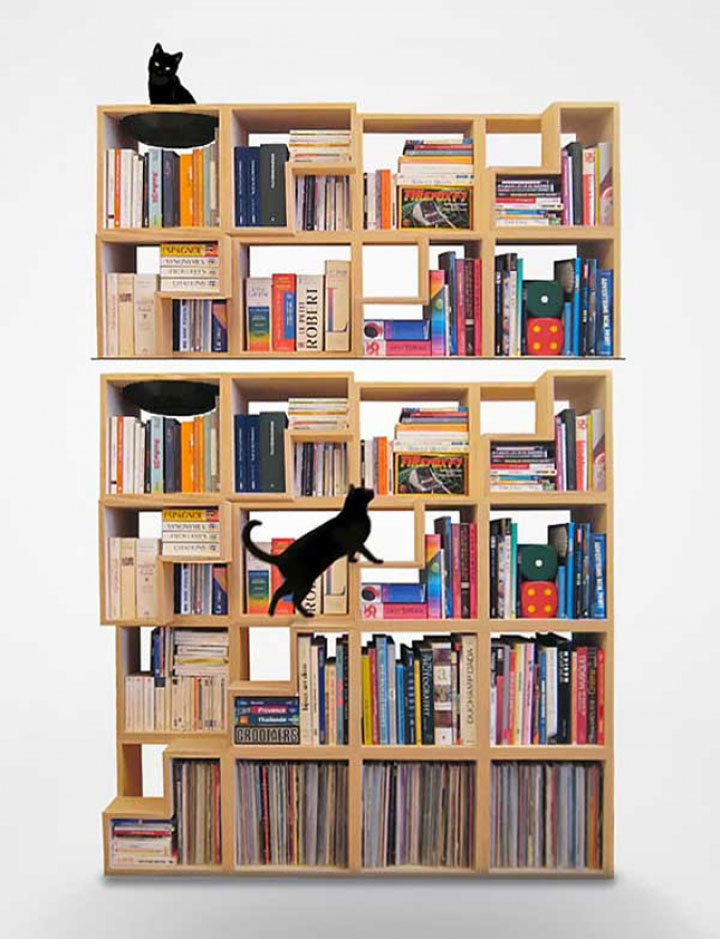 The Library Cat Home-Furniture Designs To Make Your Apartment An Animal paradise-
