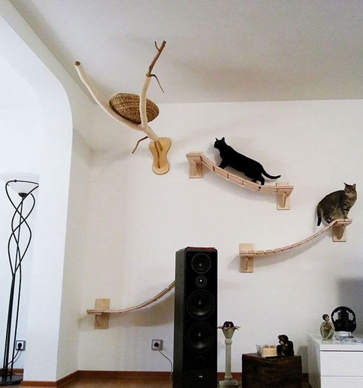 Wall cat furniture-Furniture Designs To Make Your Apartment An Animal paradise-30