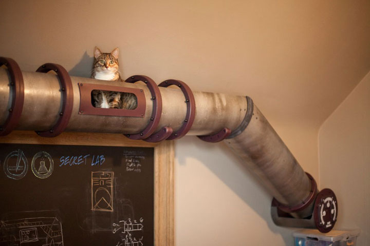 The cat tunnel-Furniture Designs To Make Your Apartment An Animal paradise-7